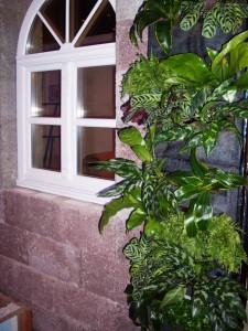 Стоимость создания и обслуживания вертикального сада