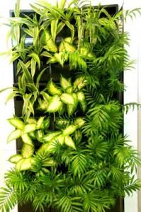 Почему ООО «Вертикальные лечебные сады» изготавливает модули вертикального озеленения на ООО «ДонПод»