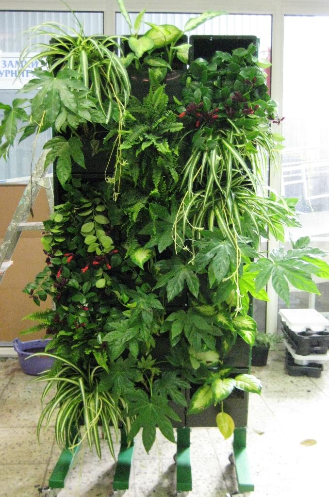 Дополнительная услуга для фирм, занимающихся остеклением и утеплением балконов - монтаж типовой конструкции вертикального сада
