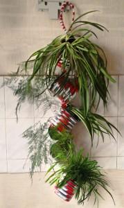 цветочная гирлянда с комнатными растениями