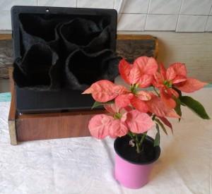 Вставка растения в рукав