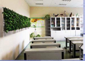 Начинаем проект компенсационного озеленения учебных заведений
