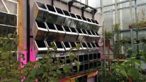 Каркас с модулями редкого полива для проведения научных исследований