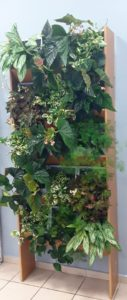 Очное обучение созданию вертикального сада 28 февраля - 1 марта