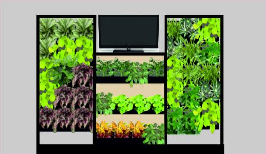 Зеленые уголки для аудиторий проведения конференций, форм дистанционного обучения, встреч