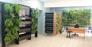 Центр вертикального озеленения