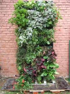 Как растения нивелируют визуальные загрязнения