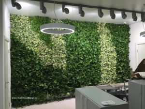 """Оздоровительные вертикальные сады в концепциях """"зеленого офиса"""""""