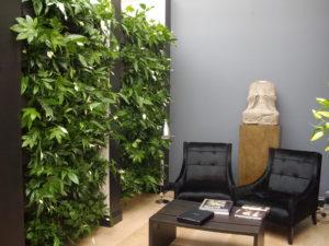Почему необходимо свой дом и место работы заполнить растениями.