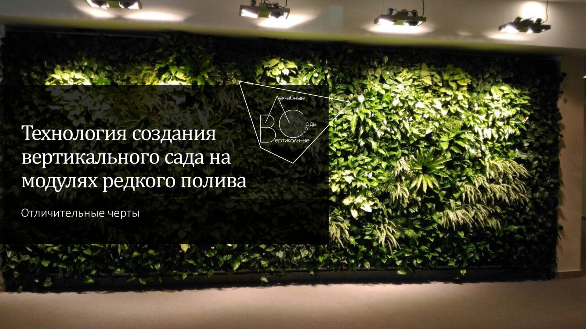 Посты, вебинары, практика по созданию вертикальных садов и городских оранжерей