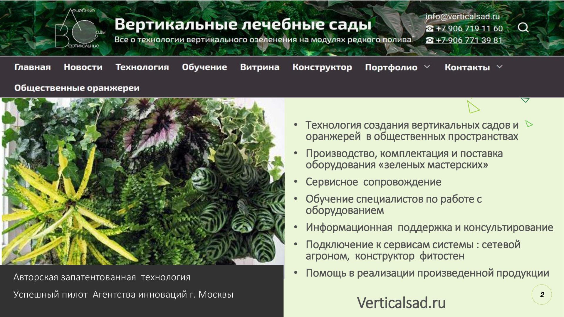 Кейс по созданию вертикальных садов и общественных оранжерей для выращивания декоративных растений