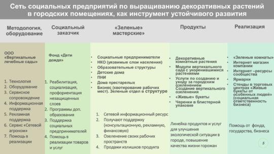 Система создания социального предпринимательства на рынке комнатных растений