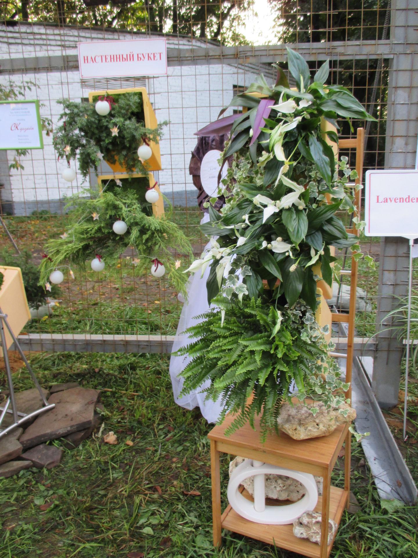 СК-Дизайн о современной флористике Вертикальные лечебные сады