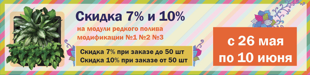 banner-skidka